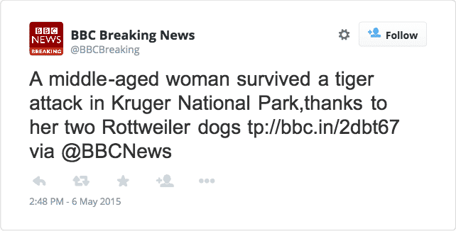 Rottweiler saves a woman