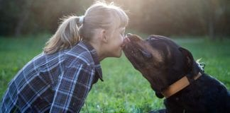 Humans Kiss Their Dogs