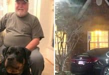 veteran-spends-night-in-car-service-dog-denied-entry-to-hotel