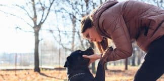 What makes your Rottweiler so anxious about separation